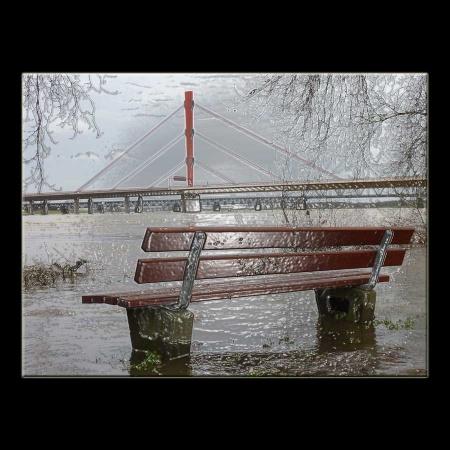 Rhein Duisburg bei Hochwasser