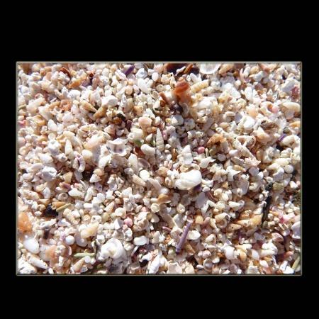 Sandstrand weiss Makro