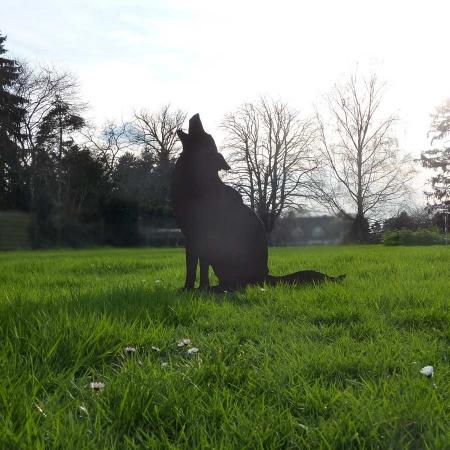 Heulender Wolf Metall Dekofigur Gartenstecker