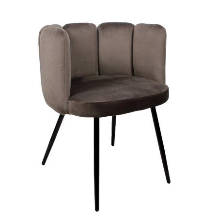 Esszimmer Stuhl Rückenlehne Sada Samt Velvet grau