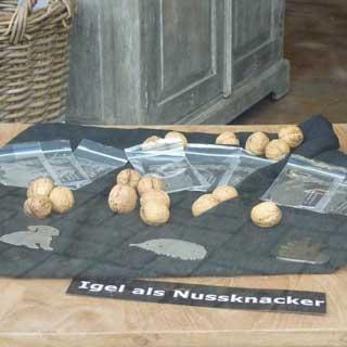 Ausstellung Nussknacker Edelstahl Moers